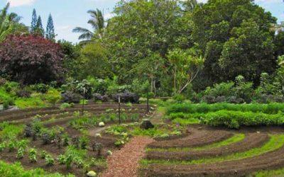 Agroecologia e Permacultura – Congresso Internacional Gratuito 2017