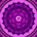 Conheça o Sétimo Chakra – Sahastrada