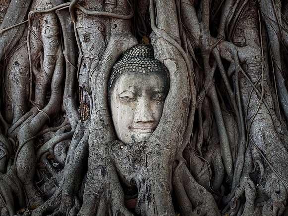 O que Buda diz sobre o sofrimento? 4 nobres verdades