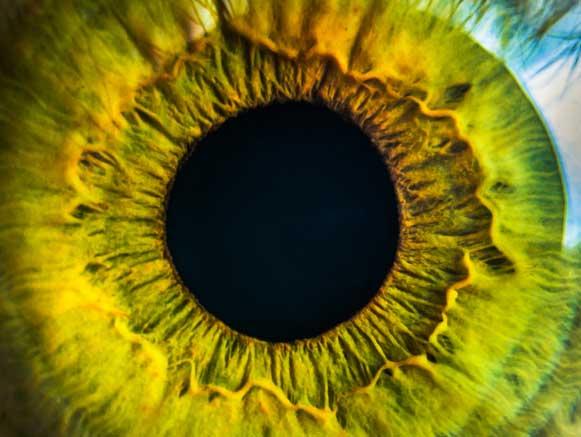 Desejo e Necessidade, o olho maior que a barriga
