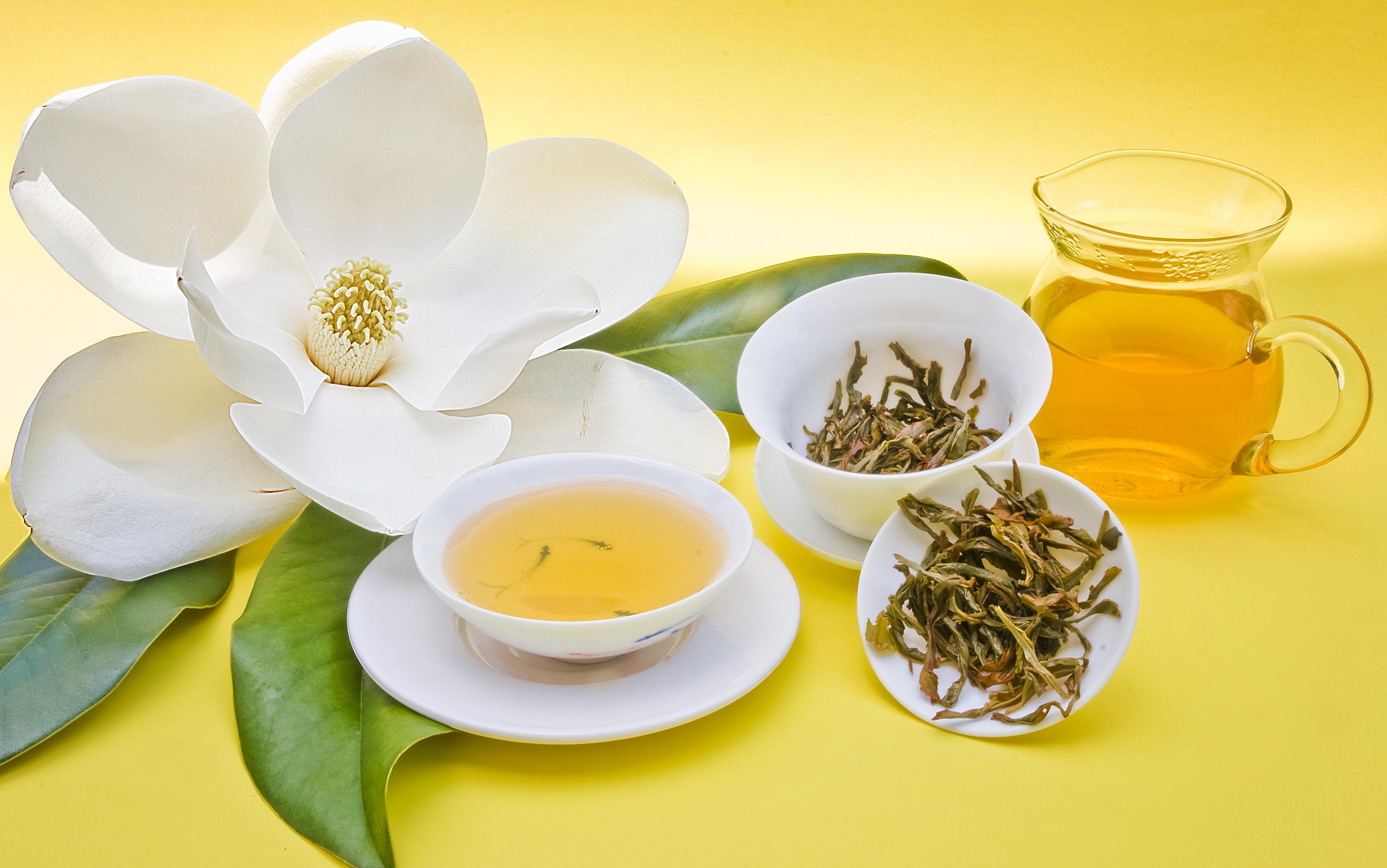 Chá Verde e Espiritualidade